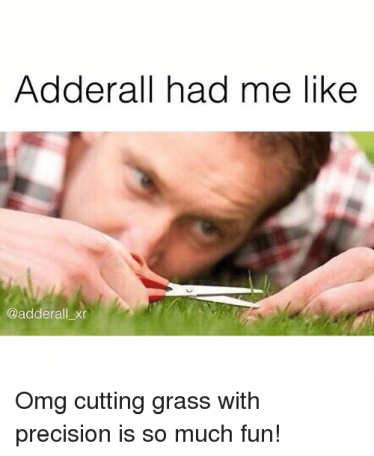 Instagram-Omg-cutting-grass-with-precision-is-1213bf